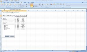 Excel 2007 - Filters