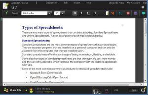 Adobe Buzzword Word Processor