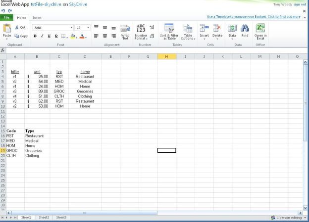 Microsoft Office Web Apps - Excel